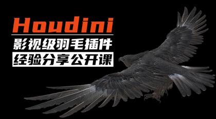 Houdini影视级羽毛插件经验分享公开课